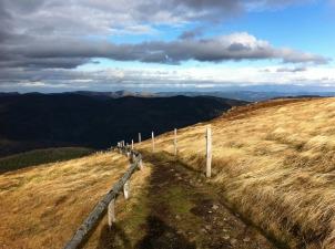 path moor